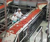 Fruit Processing Equipment Appraisers